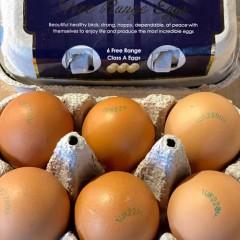 Adlington High Welfare Eggs (Half Dozen)