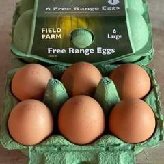 Large Free Range Eggs (Dozen)